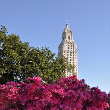 Baton Rouge State Capitol behind pink azaleas