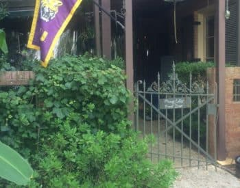 Purple and Gold flag set into greenery in front of wooden gate