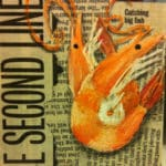 Pink shrimp on newspaper