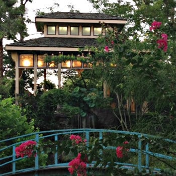 Asian style building with blue bridge surrounded by roses